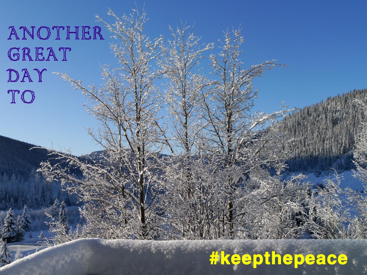 Wells Winter keepthepeace 1070784